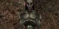 Hannat Zainsubani (Character)