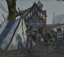 Lionguard Camp Market