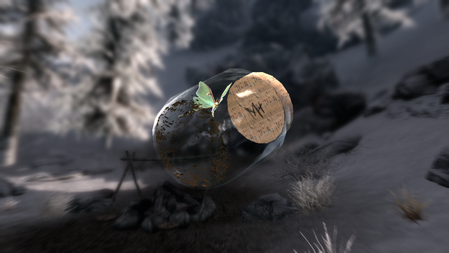 ไฟล์:TESV Moth In A Jar Mark.png