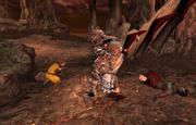 Bruma Gate Fight