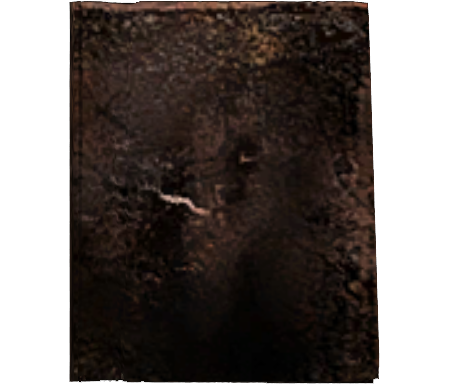 File:Burned Book.png
