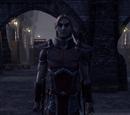 Captain Valec Doronil
