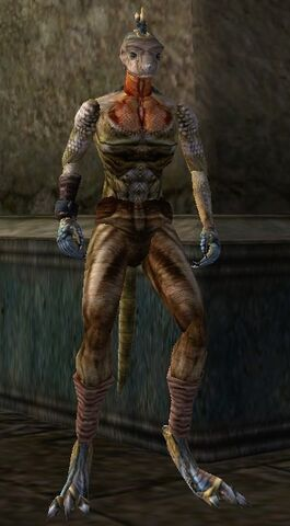 File:TES3 Morrowind - Character - High-Heart.jpg