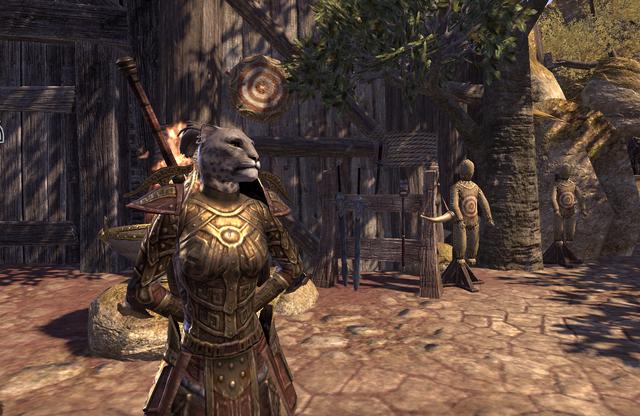 File:The swordmaster division1.png