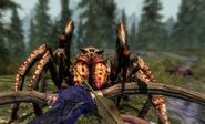 Goodbye Spider