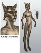 TESV Concept Khajiit Female