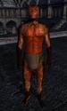 TESIV Character Derek