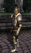 TESIV Guard Palace Guard