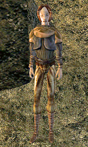 File:Miner Lisaa.png