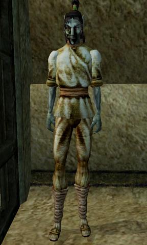 File:Femer Veralor Morrowind.png