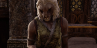 Tashpir