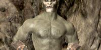 Borkul the Beast