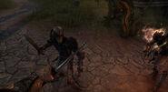 Skeleton Combat