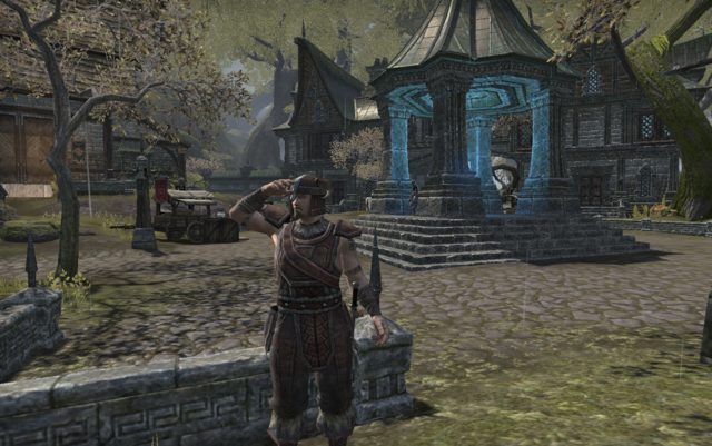 File:A nord in need1.png