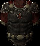 Penitus occulatus armor