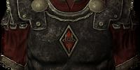 Penitus Oculatus Armor (Armor Piece)