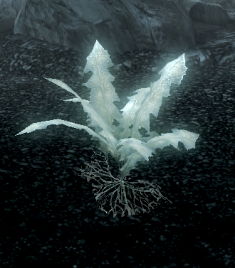 File:Glowing Nirnroot Skyrim.png