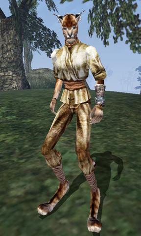 File:Abanji - Morrowind.png