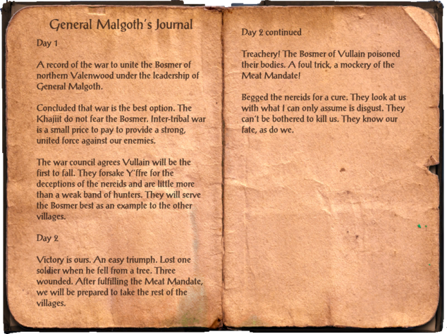 File:General Malgoth's Journal.png