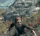 Vampire Scout (Dawnguard)