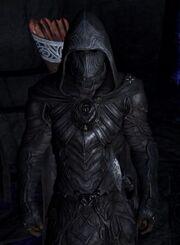 Nightingale armor-220x300
