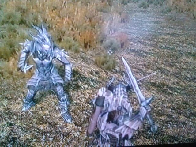 File:Me and Serana in Dragon Plate & Chain Armor.jpg