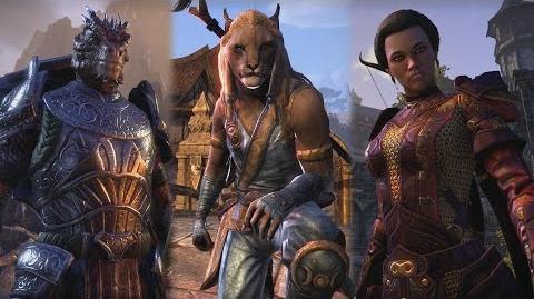 The Elder Scrolls Online Introducing One Tamriel (PEGI)