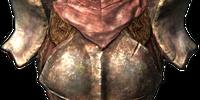 Chitin Heavy Armor (Armor Piece)