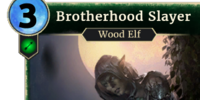 Brotherhood Slayer