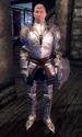 Fighters Guild Porter Bravil