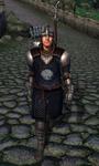 TESIV Guard Chorrol 1