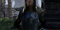 Captain Elonthor