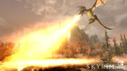 SkyrimSwitch Dragon