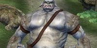 Ogre (Oblivion)