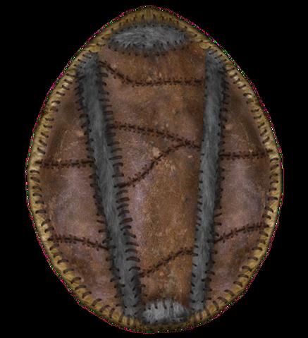 File:Fur Shield (Oblivion).png