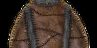 Eagle Feather Shield