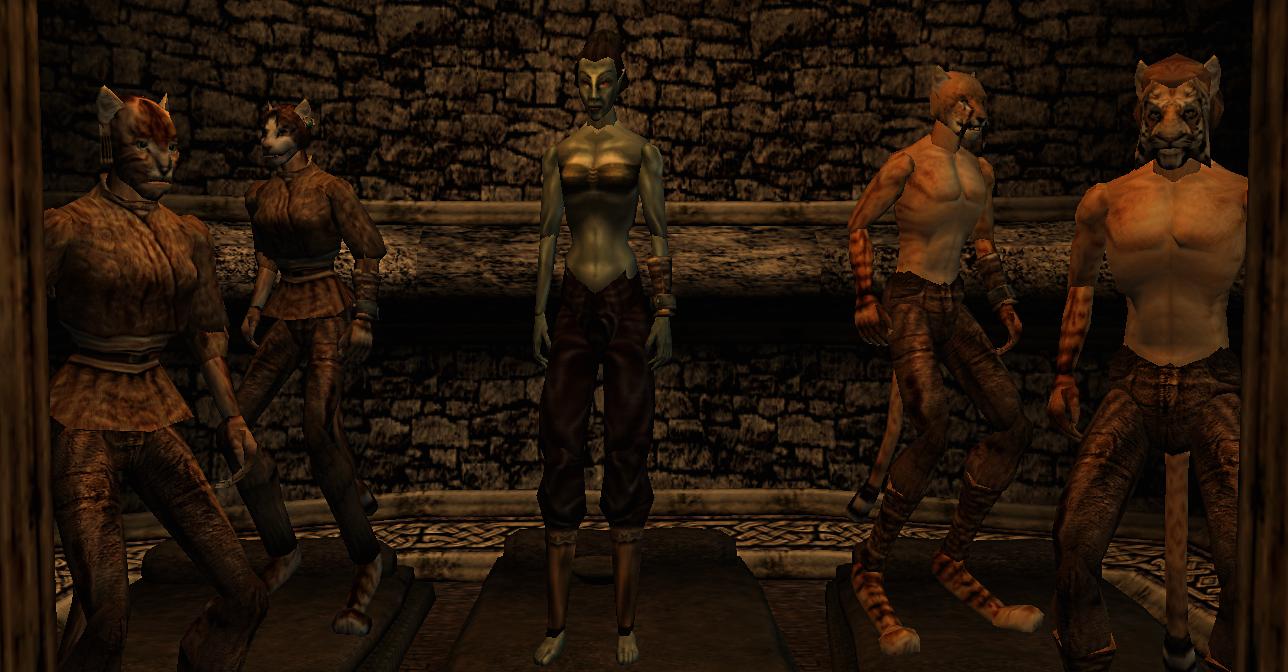 Pet Kjahiits Argonian Slaves With Morrowind Elder Scrolls Online