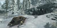 Ice Shard Wild Animal Den