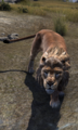ESO Lion.png