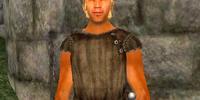 Lurio Maenius