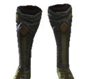 LeBlanc's Walking Shoes
