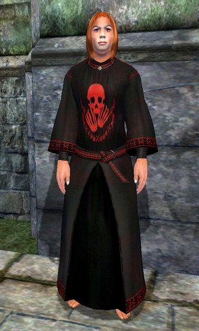 File:King of Worms' Robes.png