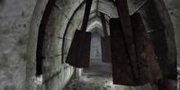 Trap (Oblivion)