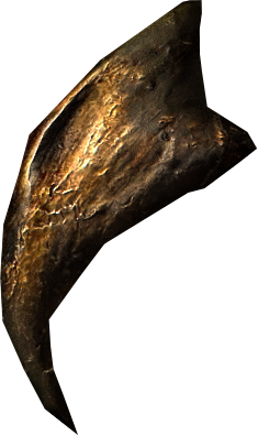 File:Hawk beak.png