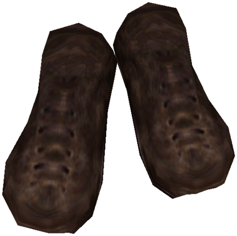 File:CommonshoesBMNordic1.png