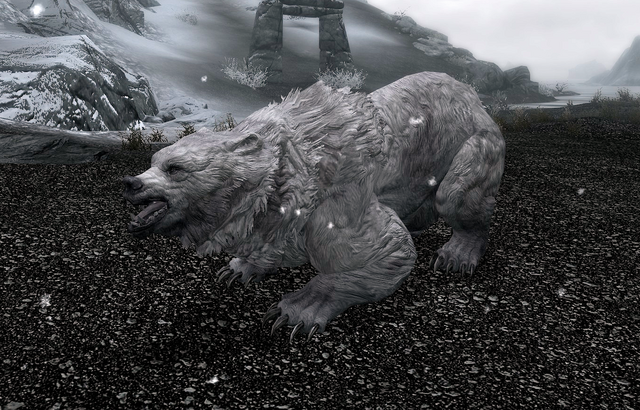 File:Snow Bear (Skyrim).png