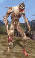 Bonewalker - Morrowind.png
