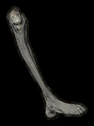 File:Ancient Vampire Leg.png