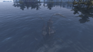 Ruined Shrine of Boethiah Above water Morrowind