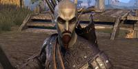 Overseer Torvayn